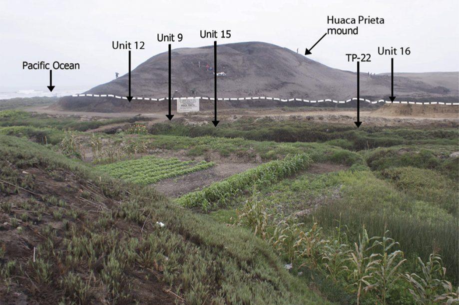 Раскопки врайоне Уака Приета