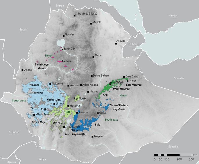 Основные зоны выращивания кофе вЭфиопии.