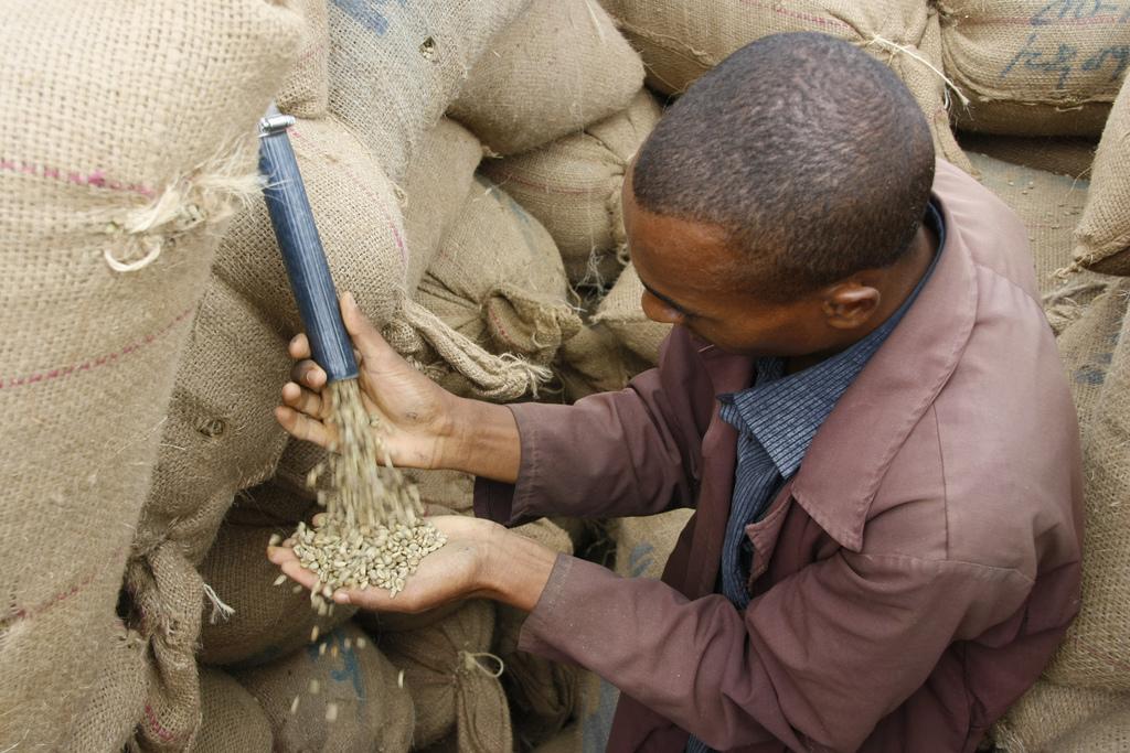 ВЭфиопии выращиванием кофе зарабатывают нажизнь 15 миллионов человек.