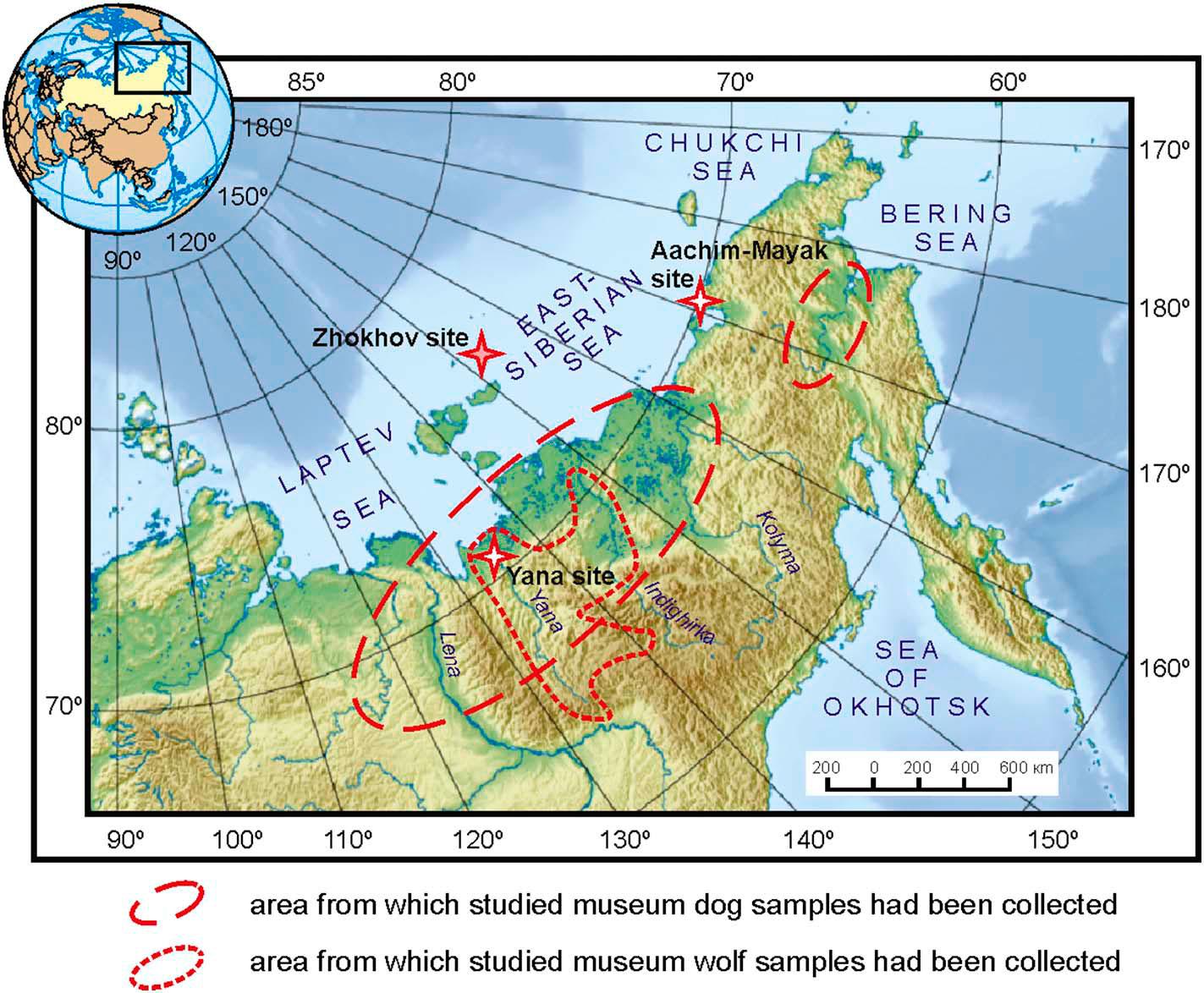 Карта исследуемой области. Звёздочкой отмечен остров Жохова.  Мелким пунктиром показана область, откуда происходят черепа волков музейной коллекции, участвовавшие висследовании. Крупный пунктир обозначает аналогичную область для собачьих черепов