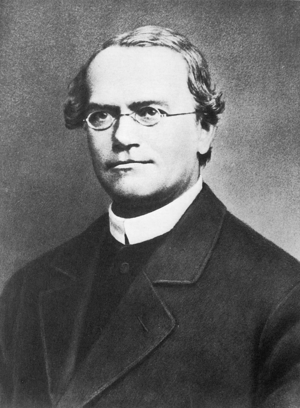Монах-августинец, аббат, «отец генетики» Грегор Иоганн Мендель.