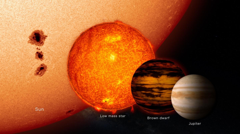 Средний коричневый карлик всравнении сСолнцем, звездой снизкой массой иЮпитером.