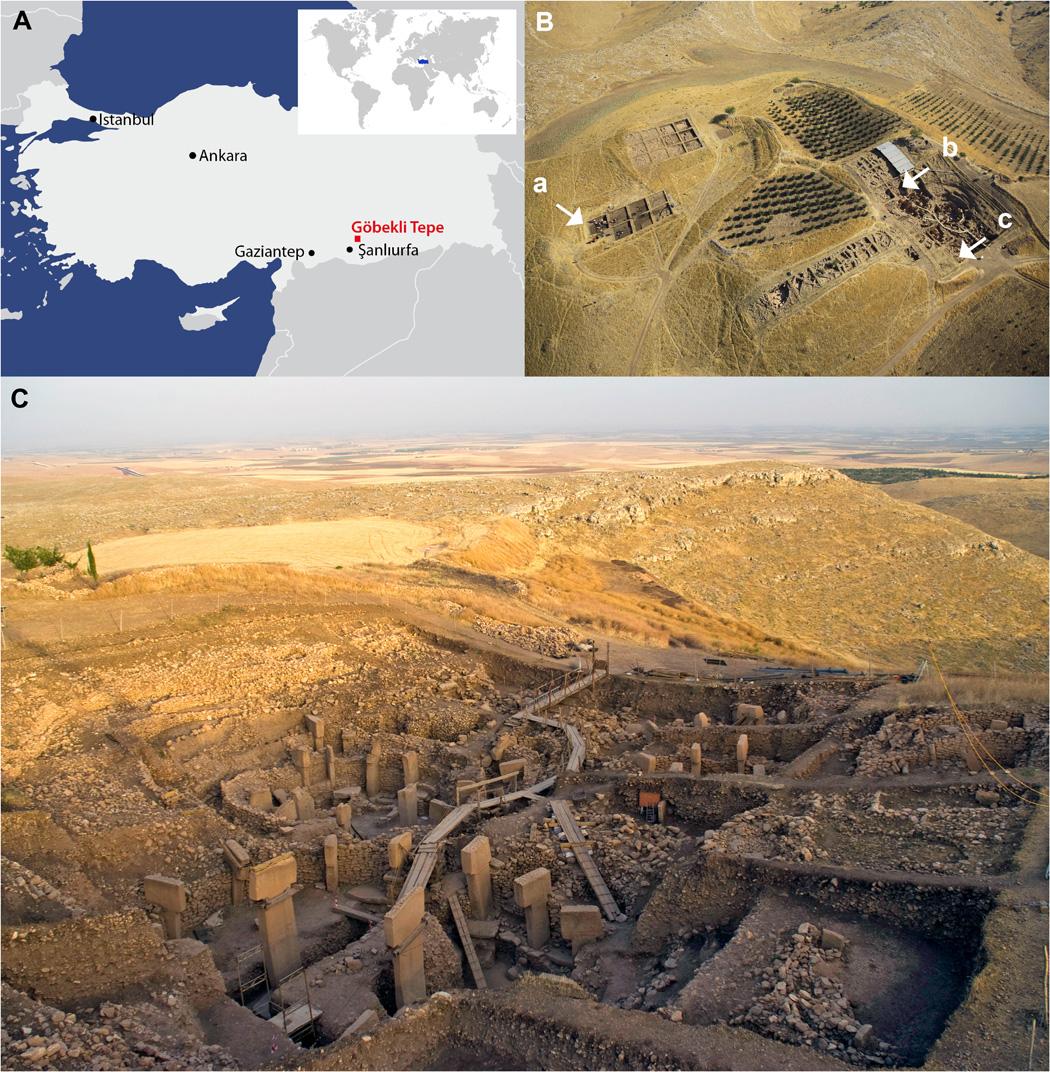 А) Расположение Гёбекли-Тепе накарте Турции; B) Схема раскопок вГёбекли-Тепе, где отмечены находок черепов 1-3; С) Фото самого памятника, сТ-образными монолитами