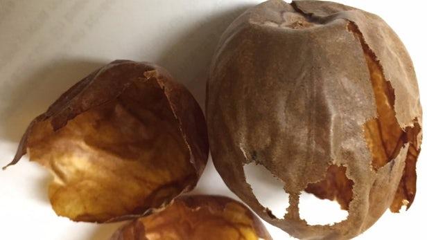 В отходах авокадо обнаружены полезные соединения