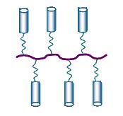 Изображение 4. Гребнеобразный ЖК-полимер