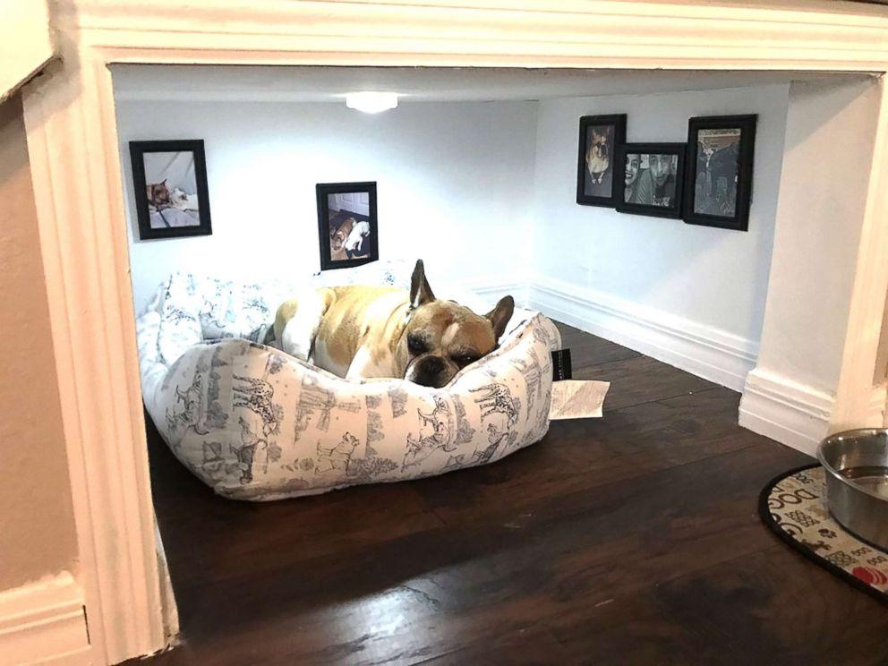 Собаки умеют охранять сон хозяина. Вбуквальном смысле слова.