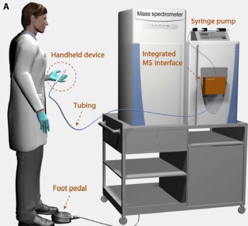 Система для анализа тканей сиспользованием MasSpec Pen.
