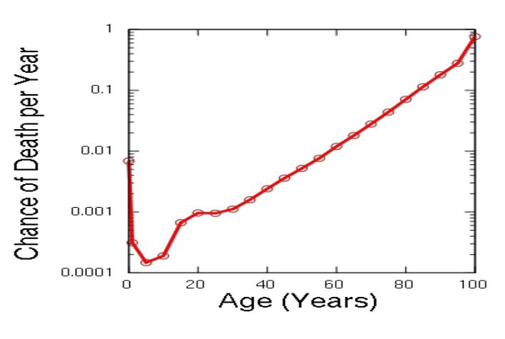 Изображение 1— Зависимость индекса смертности (по оси Y) от биологического возраста (по оси X)