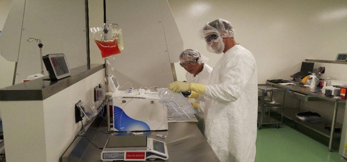 Специалисты по клеточной терапии подготавливают клетки крови пациента для генной инженерии влаборатории компании.