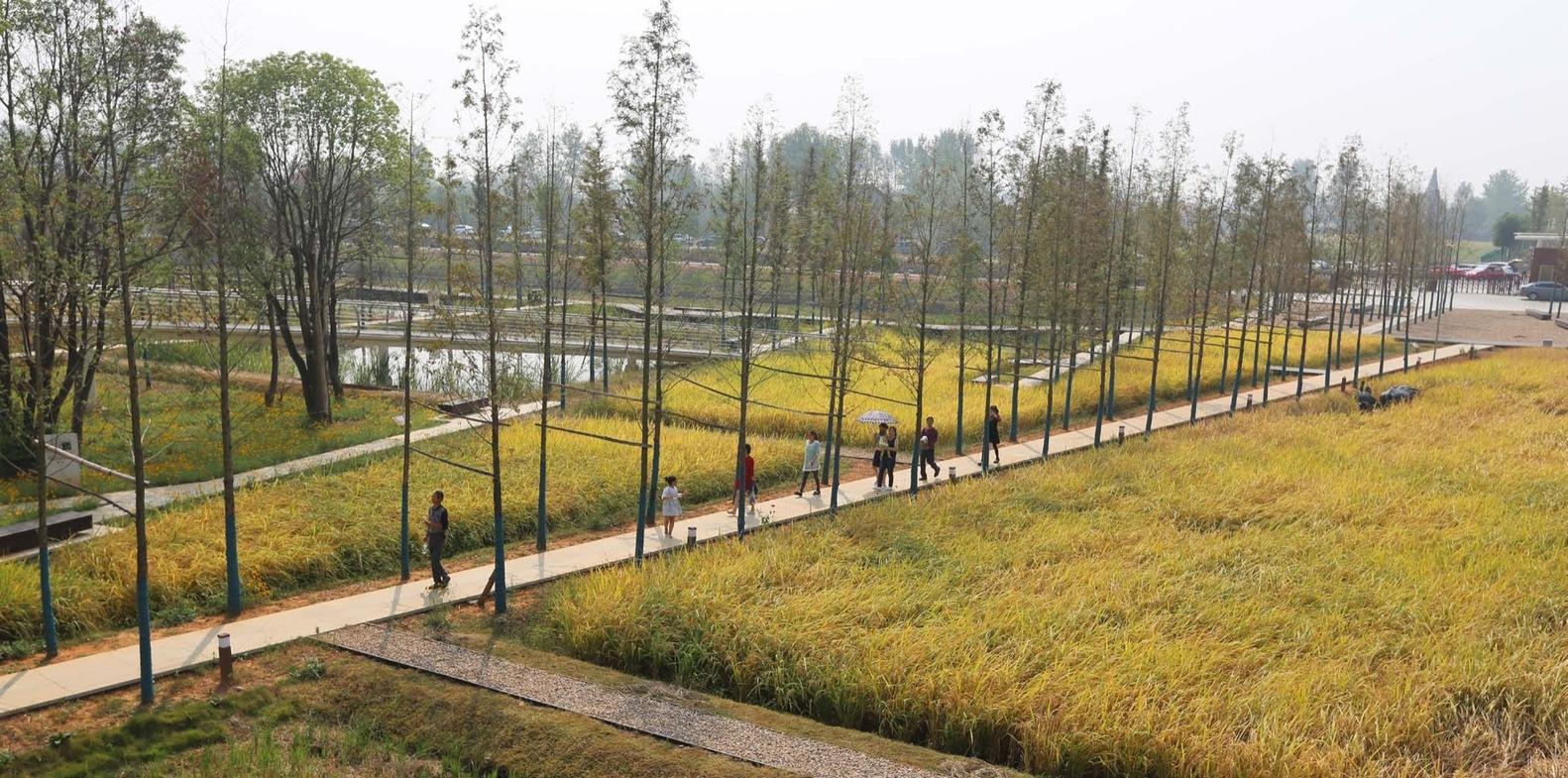 Пейзаж городища Чэнтоушань