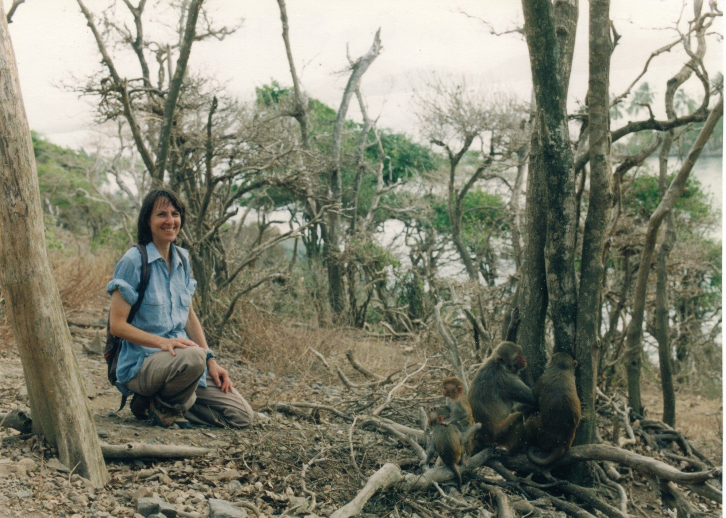 Приматолог Кэрол Берман (Carol Berman) наблюдает за макаками наКайо Сантьяго. 1994г.