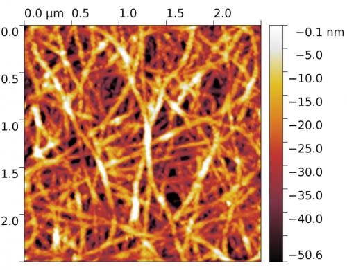 Поверхность пленки из углеродных нанотрубок
