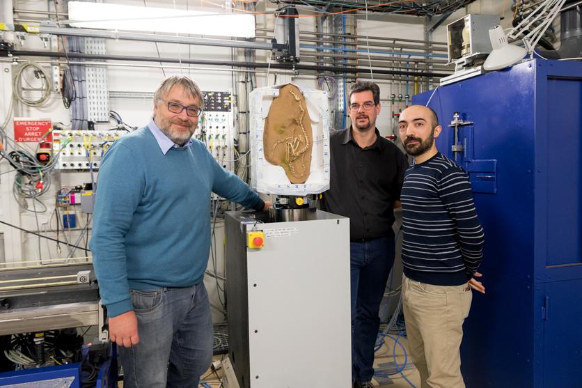 Нафото слева направо: Паскаль Годефруа, Поль Таффоро иАндреа Кау.
