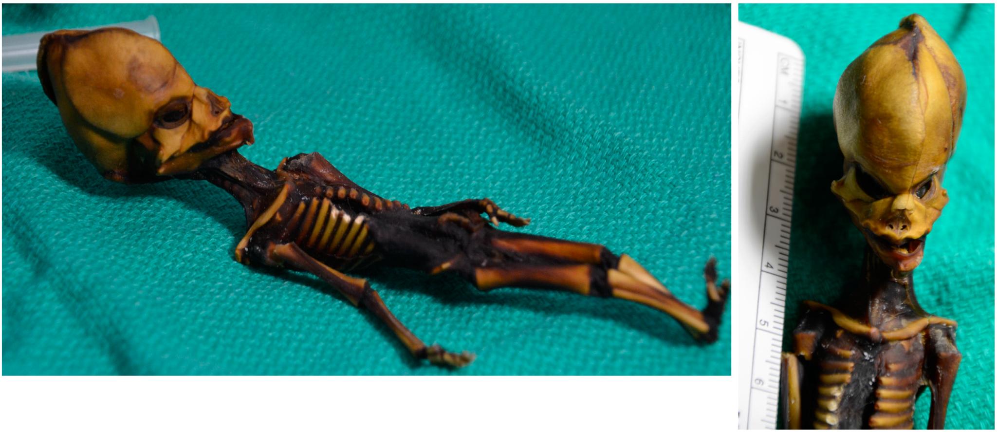 Гуманоид «Ата»— ксожалению, неинопланетянин.
