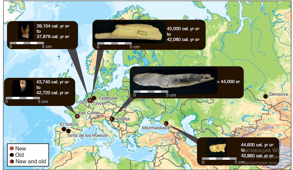 Местонахождение ивозраст пяти поздних неандертальцев, чьи останки использованы висследовании.