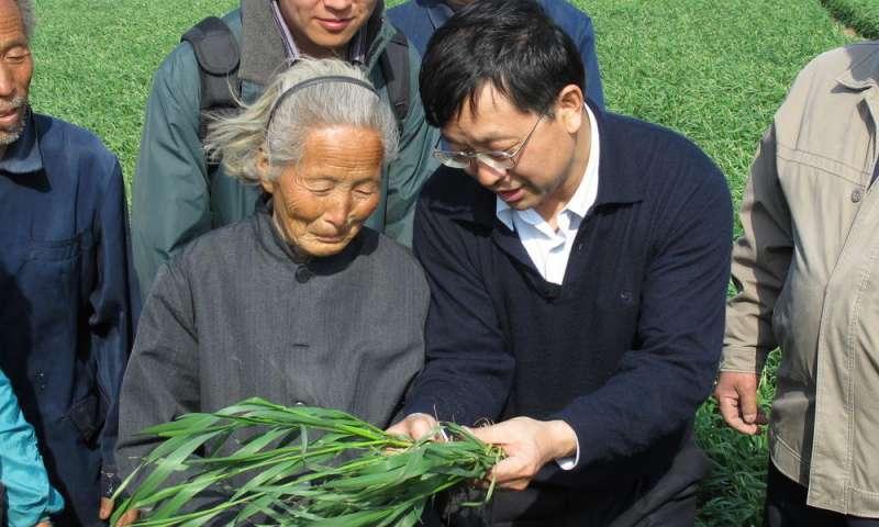 Проектом руководила группа исследователей из Китайского сельскохозяйственного университета (<em>кит. упр.</em> 中国农业大学). Нафото, вцентре, один из членов этой группы, профессор Фусо Чжан (Fusuo Zhang).