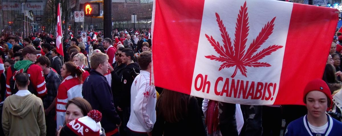 ВКанаде разрешают каннабис без оглядки намеждународные договорённости.