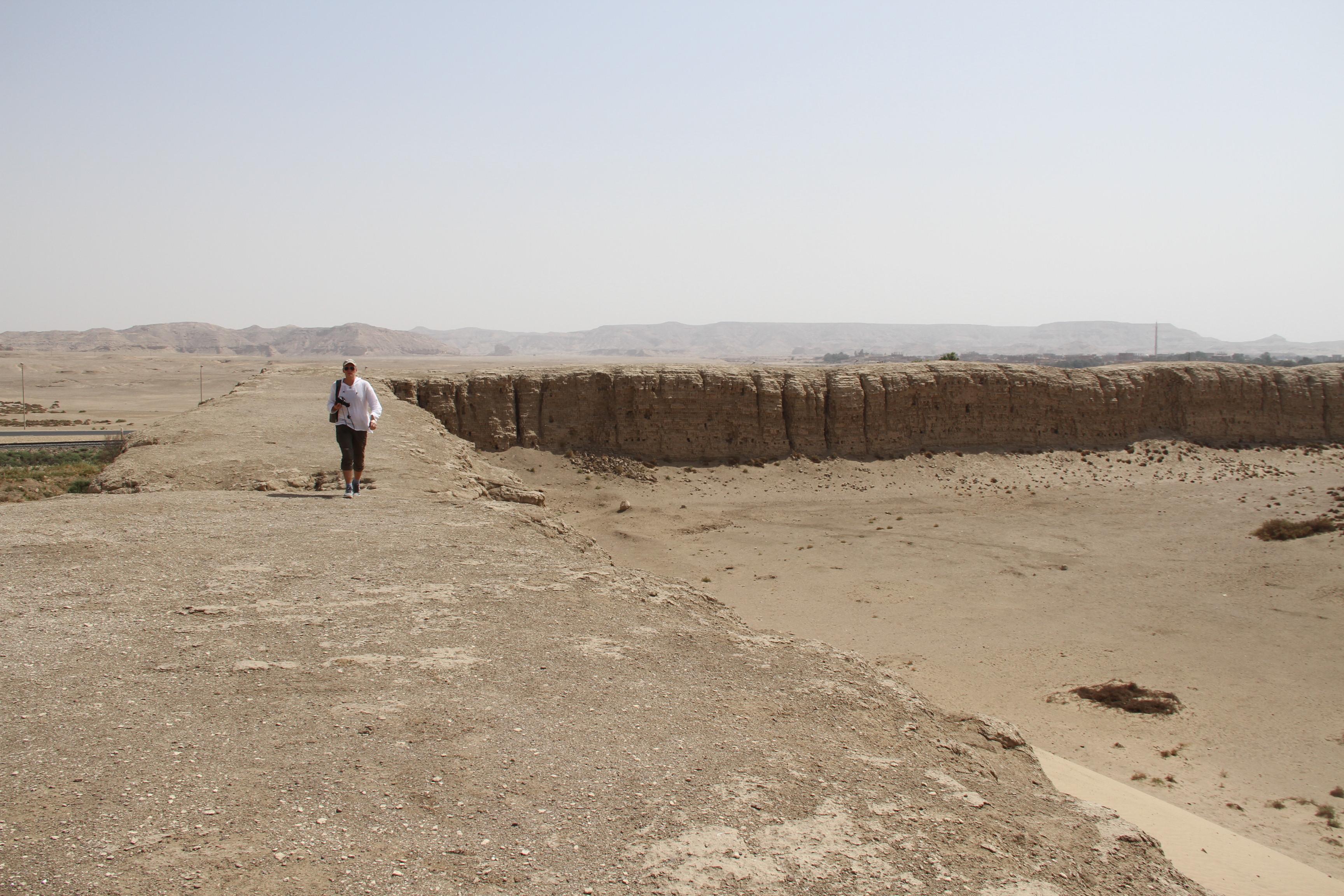 Васютин настене Нехеба