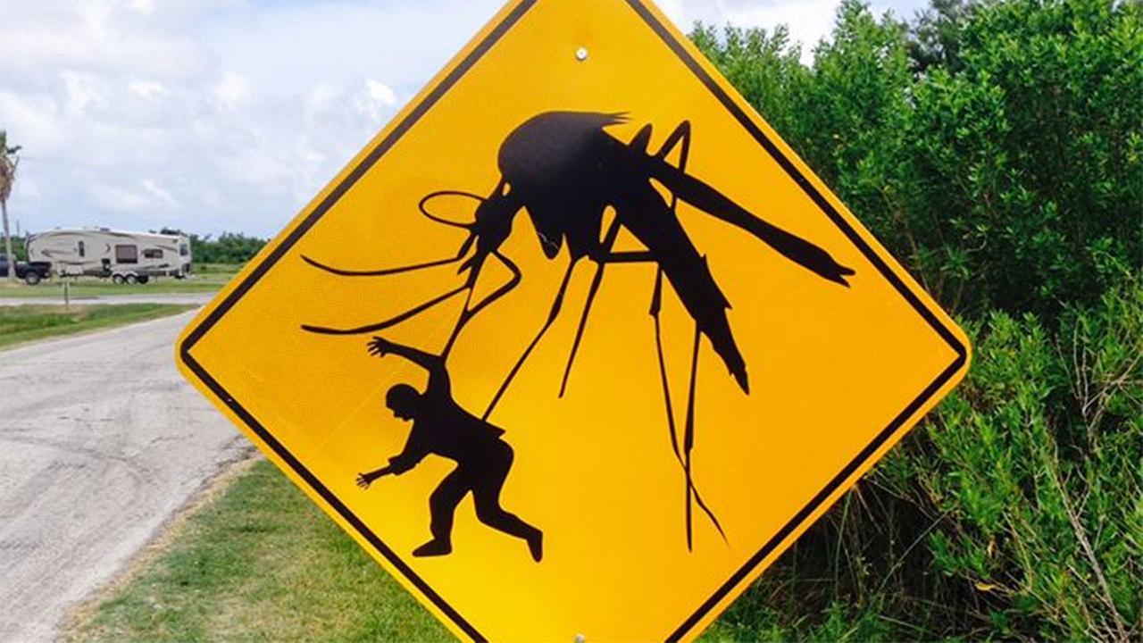 Осторожно, комары!