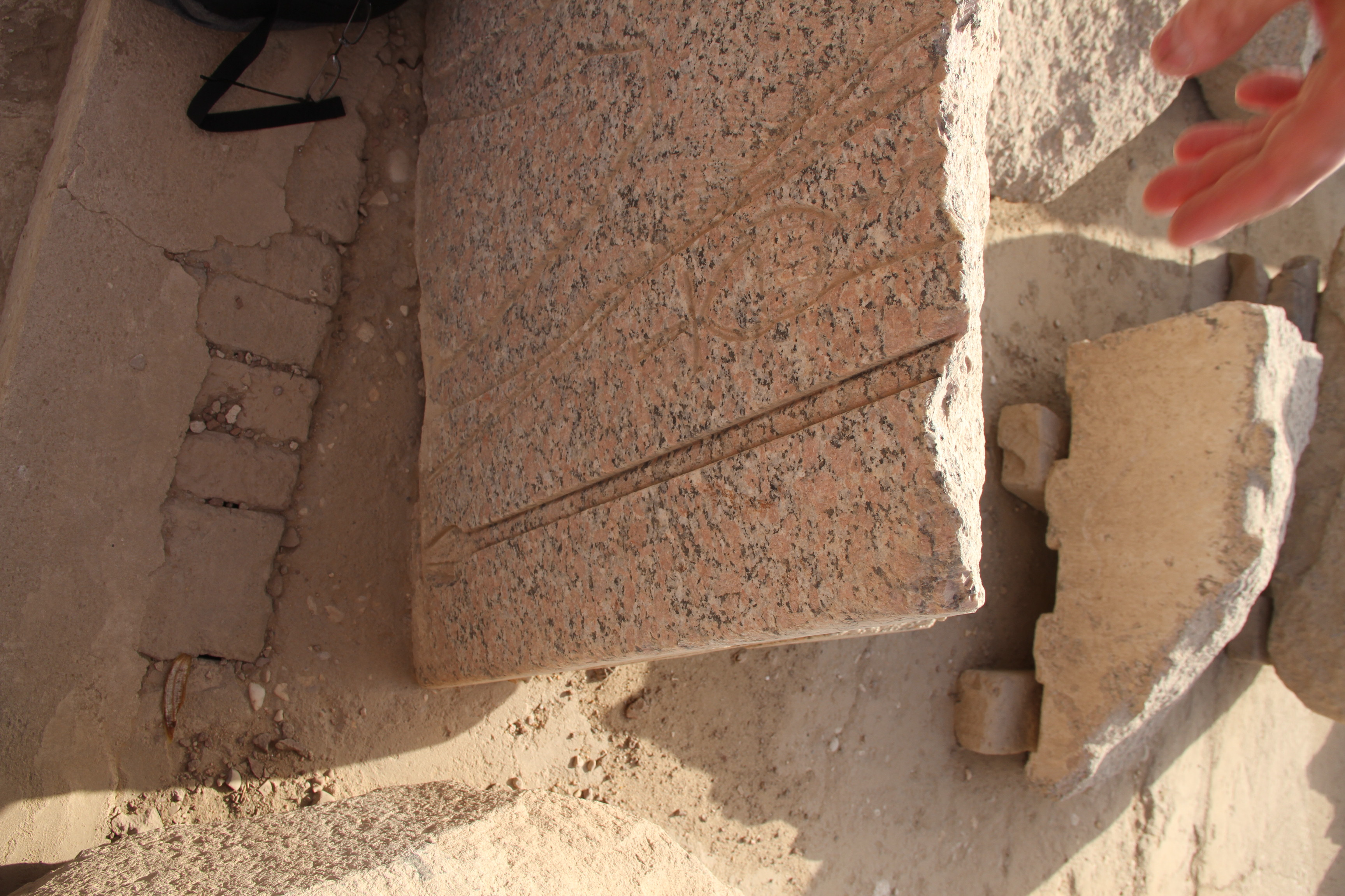 Ласточкин хвост награнитном фрагменте вКарнаке
