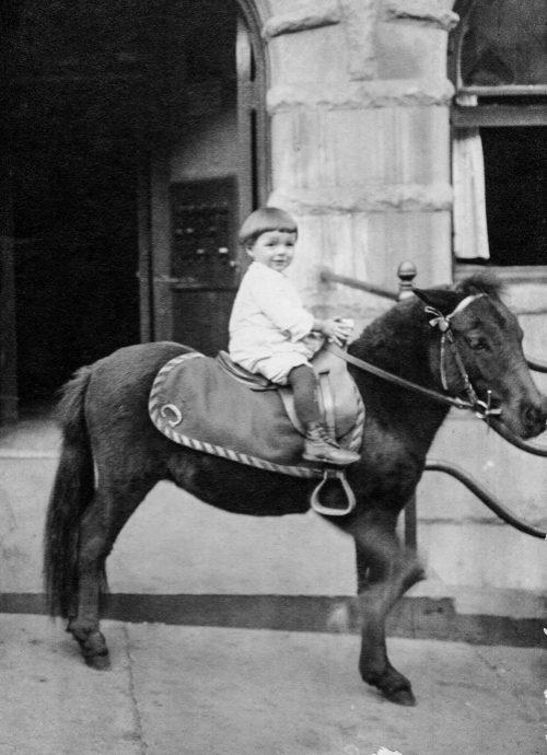 Просматривая семейные фотографии Бенсона, Элис Коллинз Плебух была поражена детской фотографией Филиппа Бенсона налошади. Она задалась вопросом, какую жизнь прожил бы её отец Джим, если бы его воспитали вего биологической семье, семье Бенсонов.