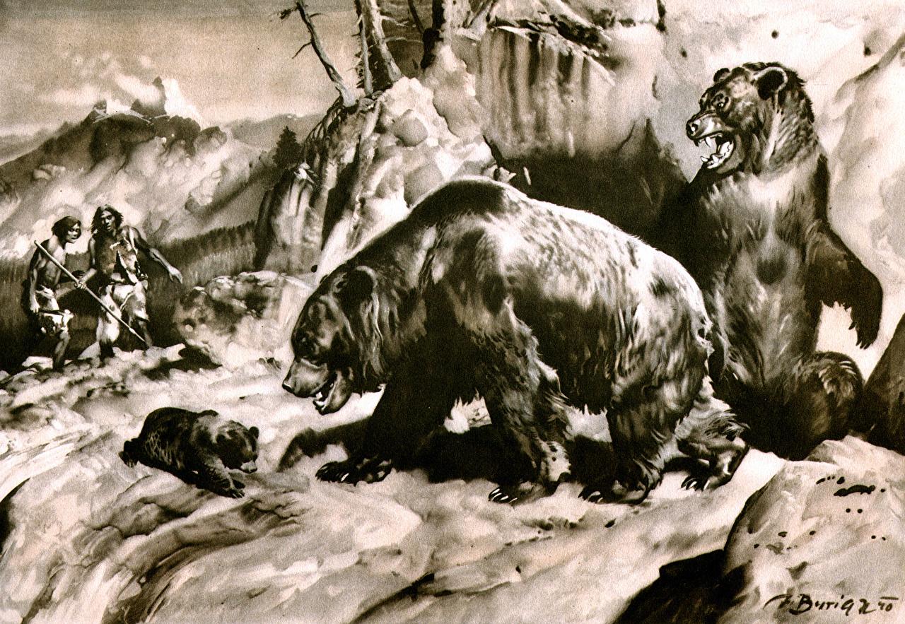 Люди ипещерные медведи. Рисунок Зденека Буриана.