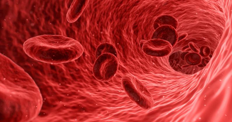 Антигены, ограничивающие переливание крови взависимости от группы, находятся наповерхности эритроцитов. Иих можно оттуда «счистить».