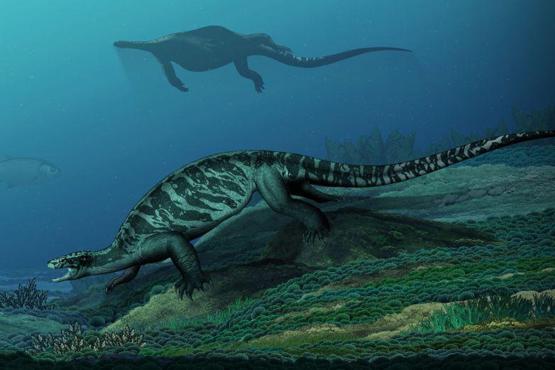 Реконструкция внешнего вида вымершей «голой» черепахи.