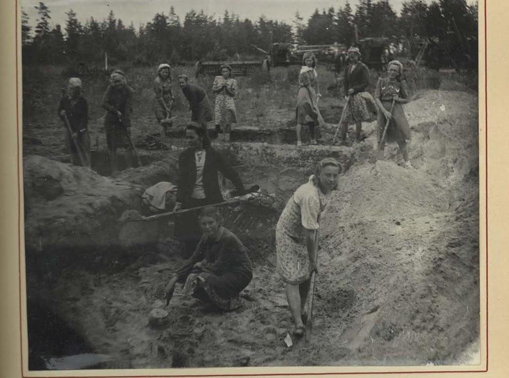 Институт археологии РАН выложил воткрытый доступ оцифрованные отчёты экспедиций 1944—1946 годов