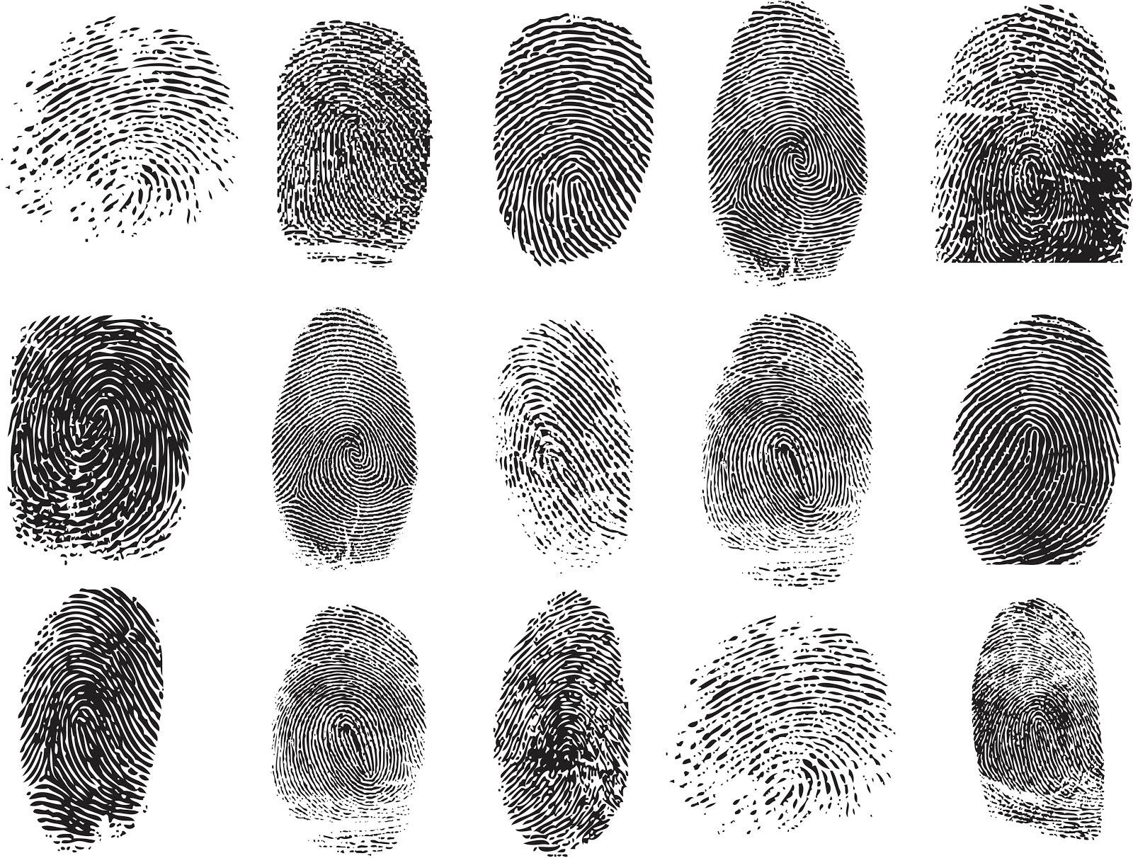 Сгенерированный нейронной сетью отпечаток пальца может быть похож навсе эти сразу.