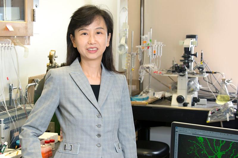 Профессор Чжэн Янь. Университет штата Нью-Йорк вБуффало.