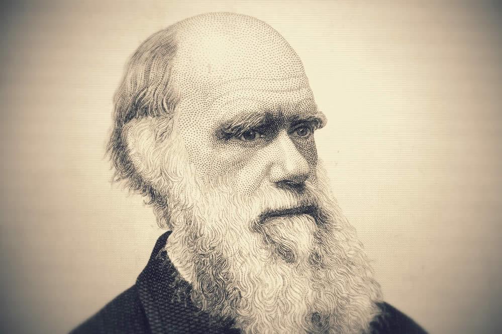 Выставка к210-летию со дня рождения Чарльза Дарвина.