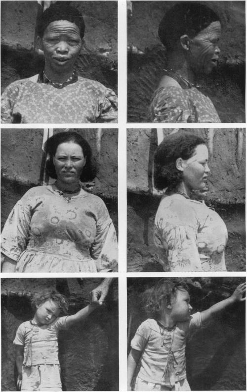 Бабушка-бушменка, её дочь от брака сангличанином ивнучка, снова от брака цветной женщины севропейцем