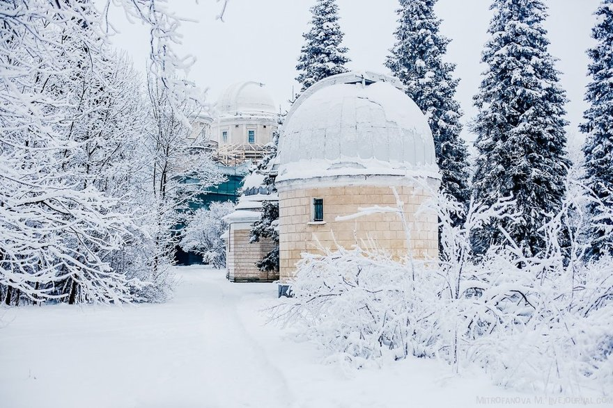 Зимняя программа вПулковской обсерватории.