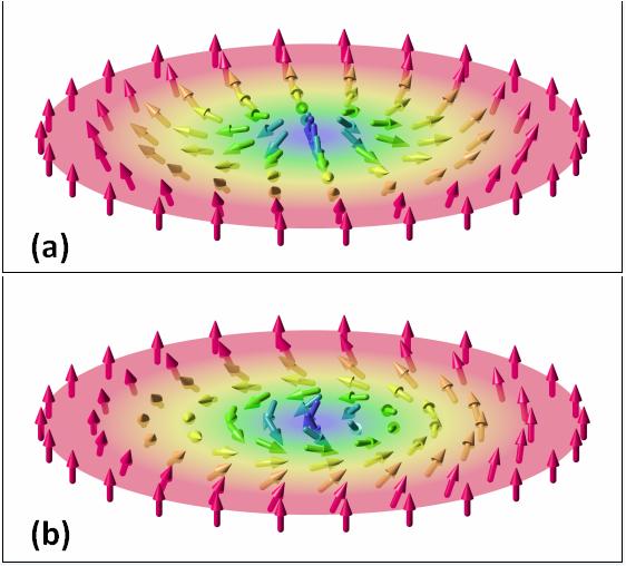 Векторные поля двумерных магнитных скирмионов