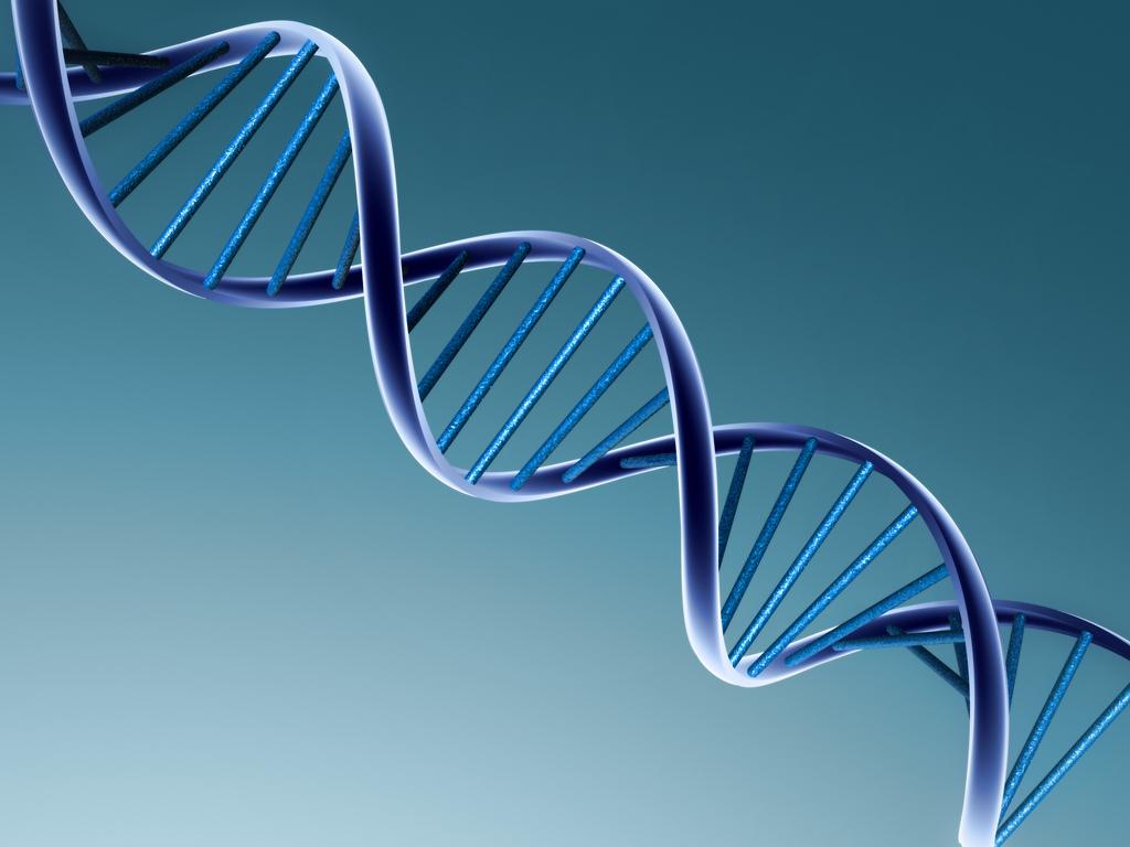 Учёные заявляют об удачном сочетании технологии CRISPR сприменением гемопоэтических стволовых клеток влечении наследственного заболевания крови.