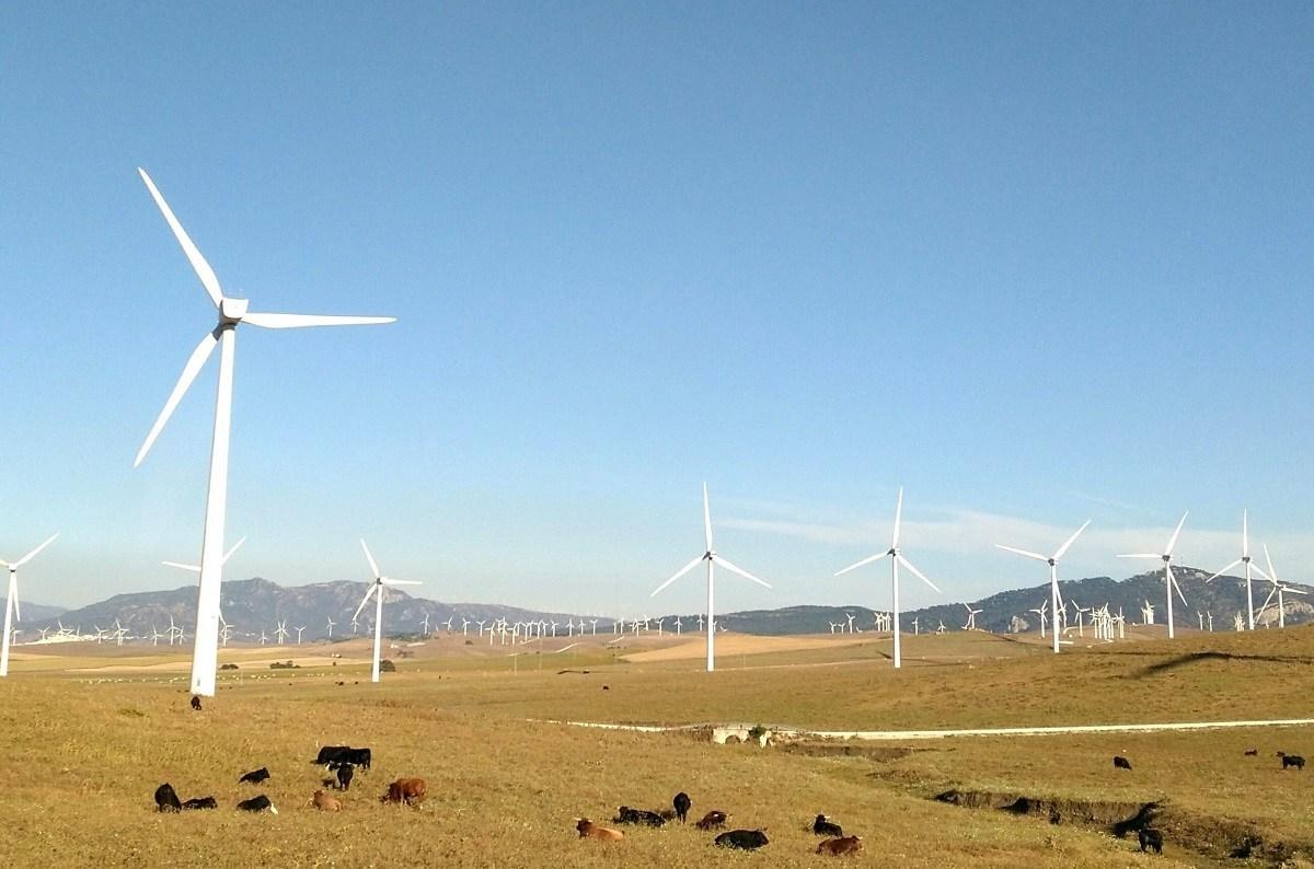 Чем больше возобновляемой энергии мы используем вместо невозобновляемой— тем лучше.