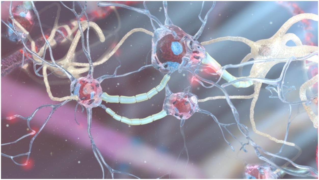 Одна из задач учёных— внедрить нанороботы вкровообращение человека. Фото: Yuriy Svidinenko, Nanobotmodels Company