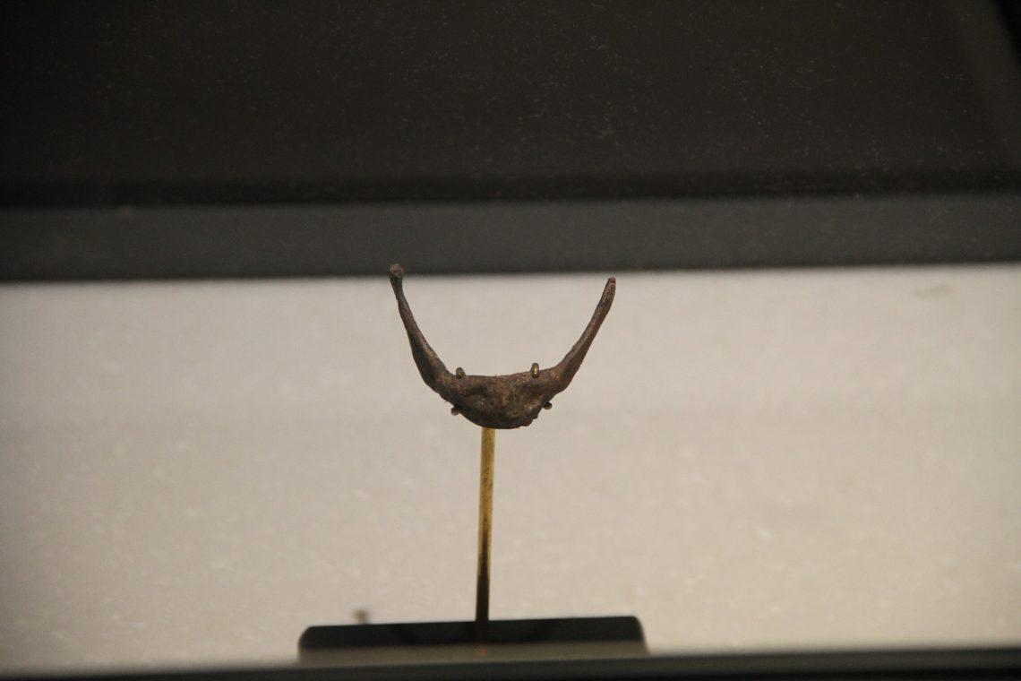 Подъязычная кость неандертальца из Кебары. Музей естественной истории имени Стейнхардта