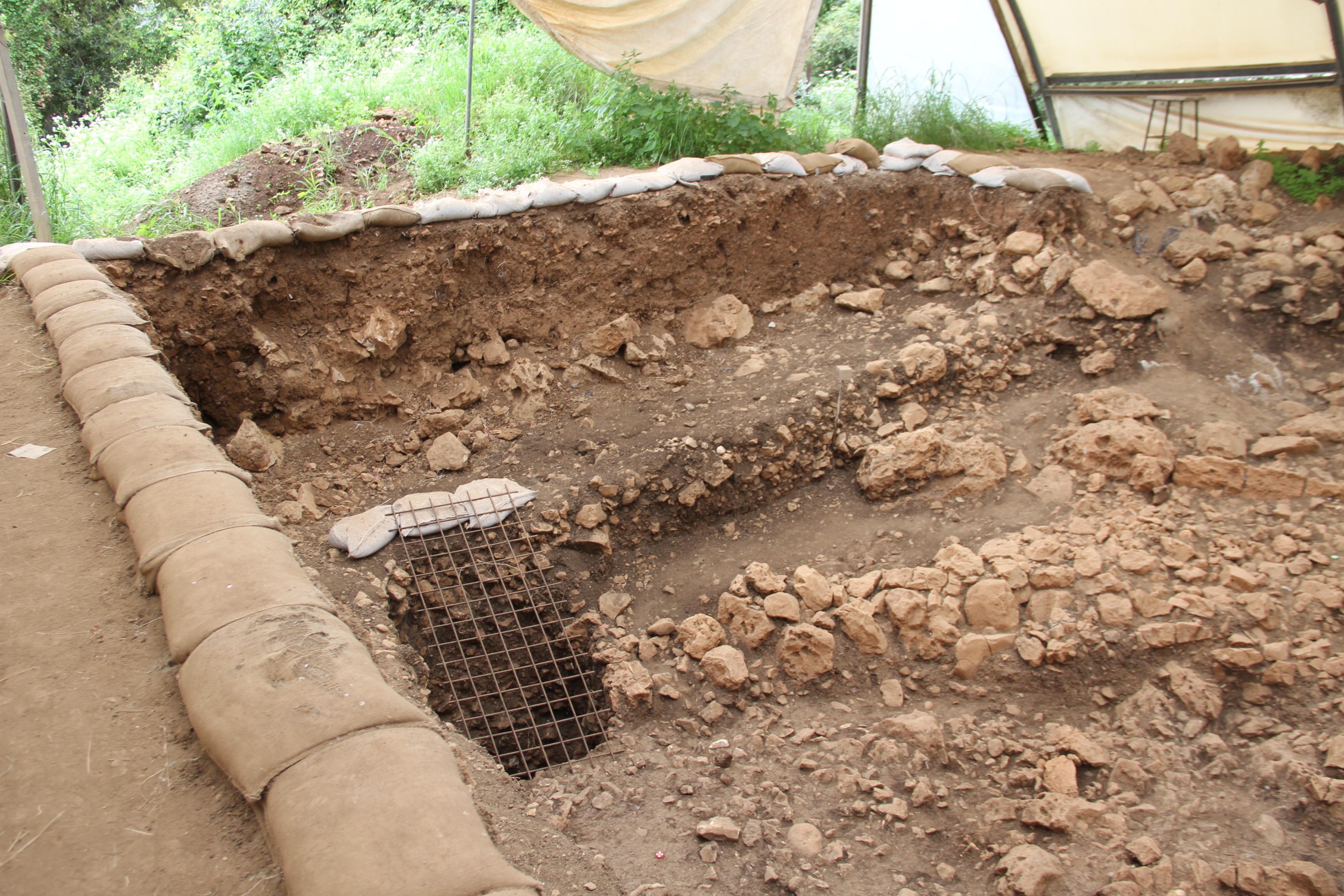 Действующий раскоп угоры Кармель