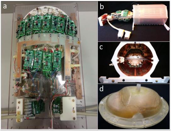 Так выглядела катушка скейсом для мозга инаходящимся внутри органом. Credit: Andre van der Kouwe et al. 2019
