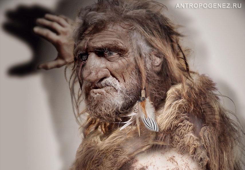 """Возможно, последними неандертальцами были старики. / Изображение— реконструкция, выполненная Олегом Осиповым для <a href=""""http://antropogenez.ru/species/4/"""" rel=""""noopener"""" target=""""_blank"""">Антропогенез.Ру</a>."""