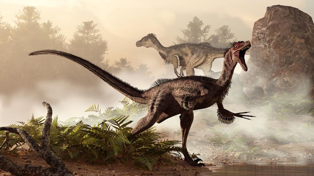 Широкая популярность динозавров может вредить популяризации палеонтологии.