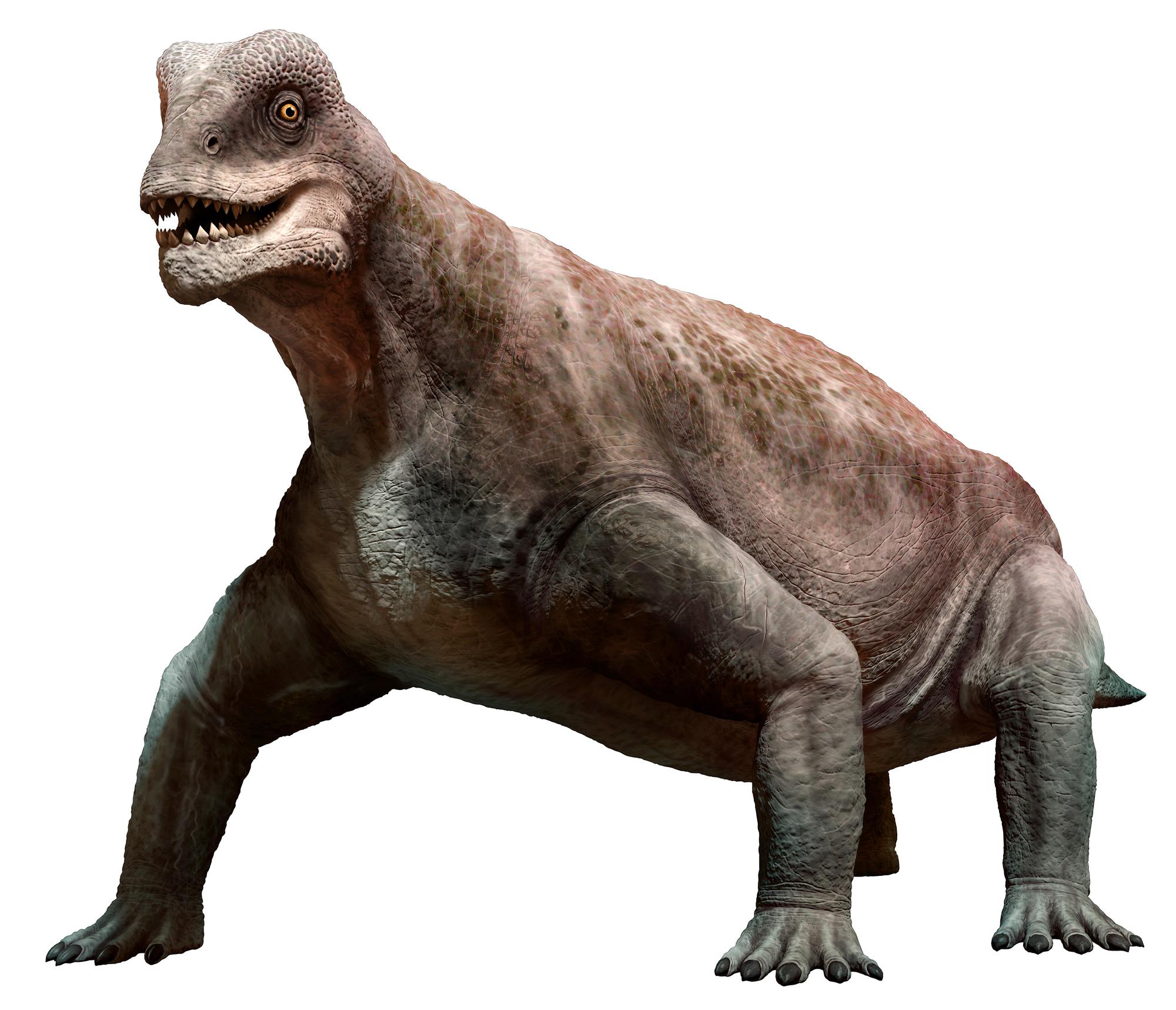 Мосхопс— представитель семейства тапиноцефалов из класса синапсид. Нединозавр. Хотя ипохож