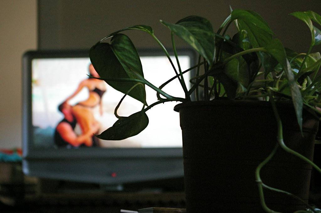 Учёные исследовали мозг мужчин иженщин во время просмотра порнографии.