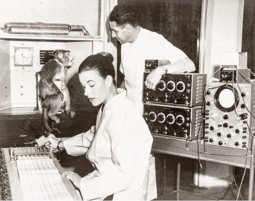 На фотографии: Дельгадо, его жена Кэролайн иобезьяна, вмозг которой встроен нейроимплант.