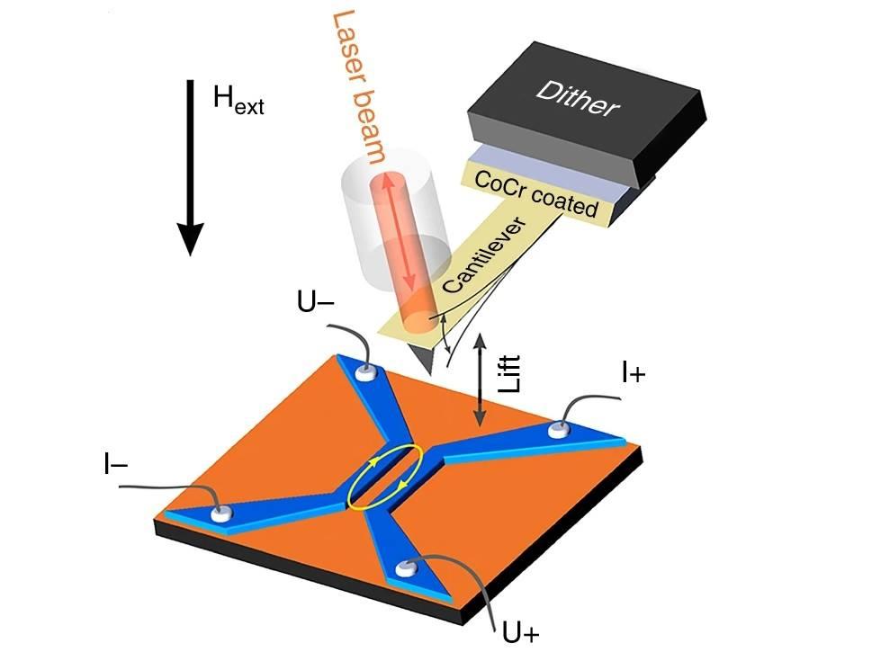 Экспериментальная установка: ниобий Nb (синий), медь Cu (оранжевый). Эллипс отмечает область Джозефсоновского перехода. Игла магнитно-силового микроскопа смагнитным покрытием из Co/Cr колеблется пьезоэлементом (dither); оптоволокно используется для считывания колебаний.