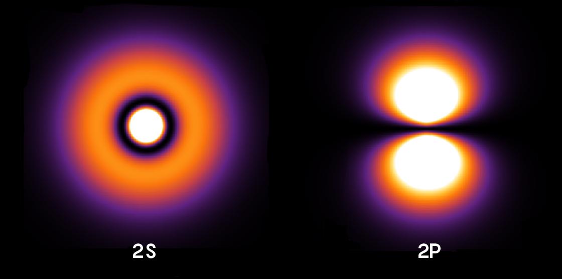 Состояния 2S и2P атома водорода показывают, вкаком месте влюбой момент времени следует искать электрон. Наданных рисунках изображены возможные местоположения электрона вкаждом из указанных состояний