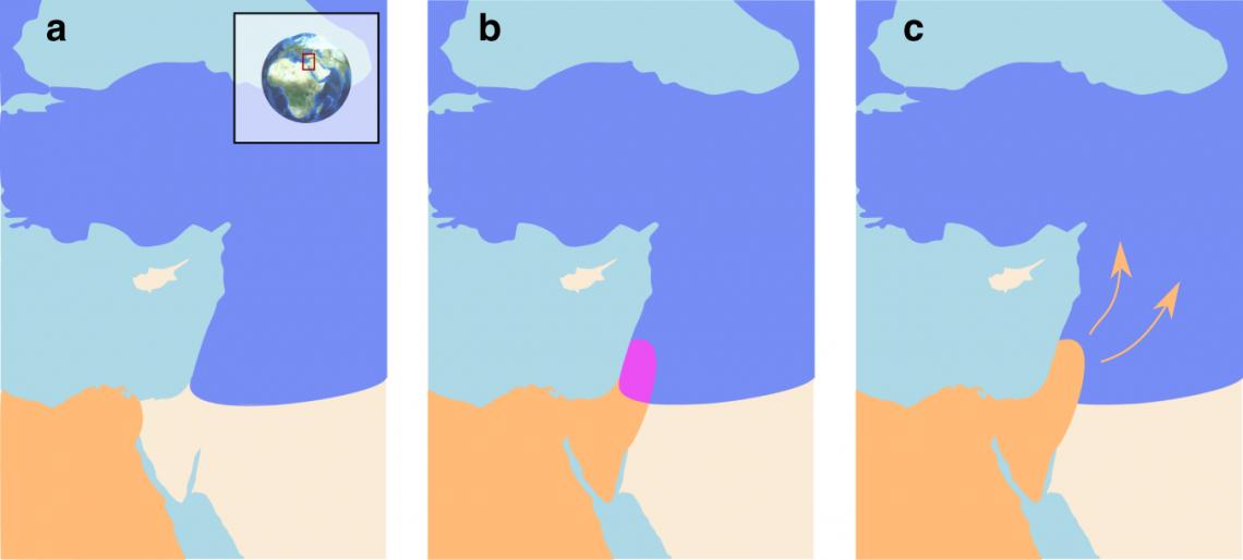 Схема взаимодействия сапиенсов инеандертальцев вЛеванте. Ареал сапиенсов— оранжевый, неандертальцев— голубой. Контактная зона— лиловая.