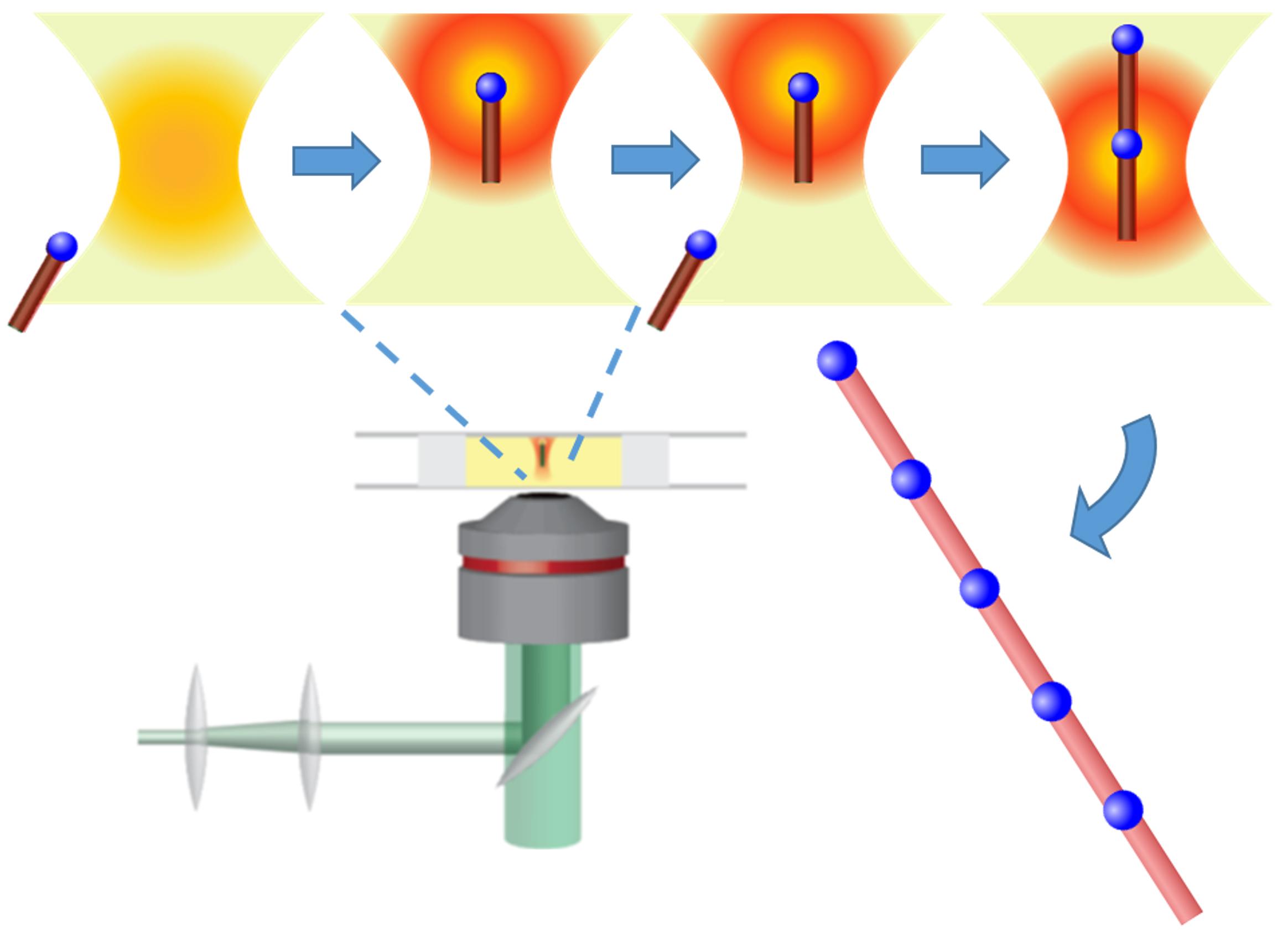 Постройка наноструктуры спомощью светового луча.